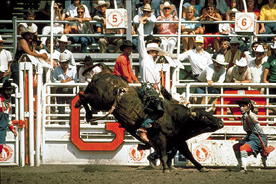 Rodeo The Canadian Encyclopedia
